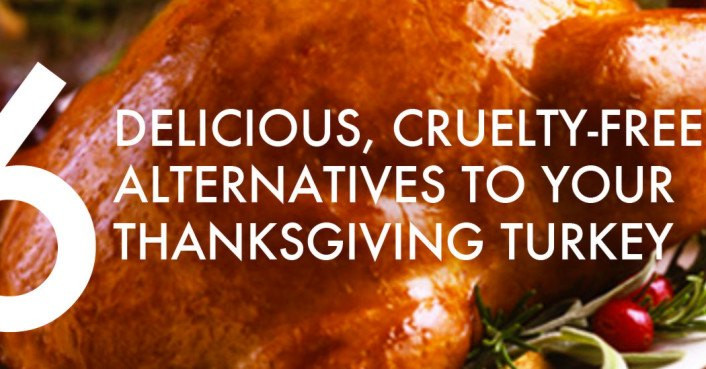Alternatives To Turkey For Thanksgiving  6 cruelty free alternatives to a real dead bird for your