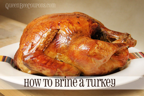 Alton Brown Thanksgiving Turkey  Best Ham Turkey and Prime Rib prices for your Christmas