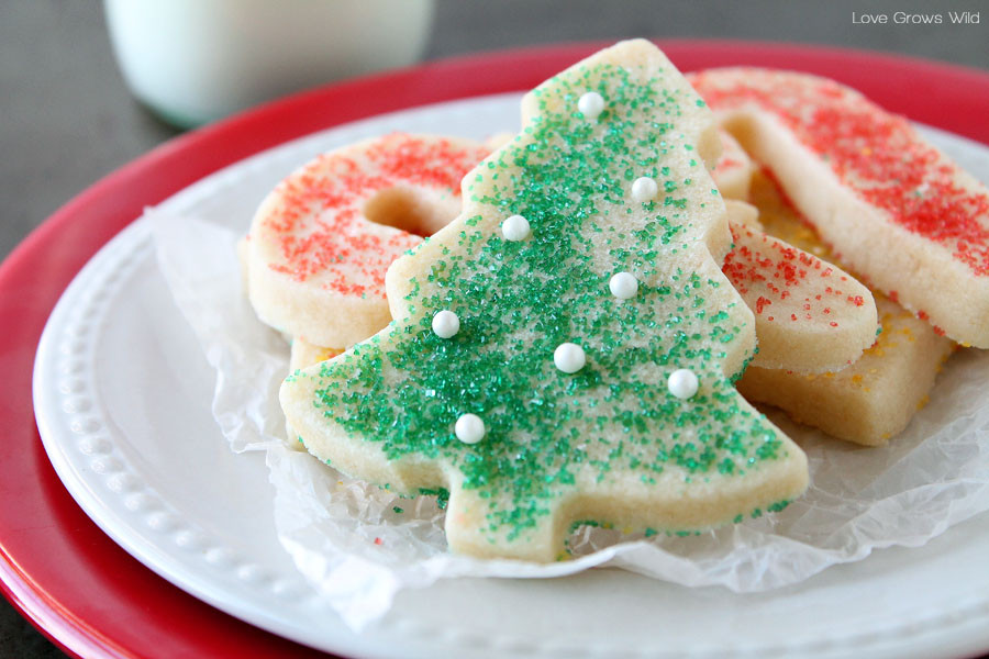 Best Christmas Cutout Cookies  The BEST Sugar Cookie Cut out recipe