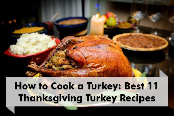 Best Cooked Turkey For Thanksgiving  How to Cook a Turkey 11 Best Thanksgiving Turkey Recipes