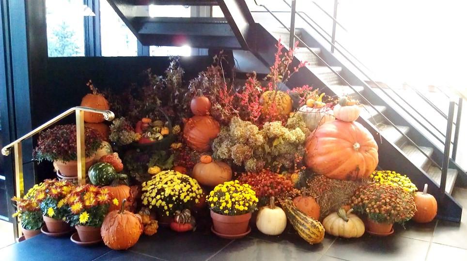 Best Thanksgiving Dinner Nyc  Best Restaurants In NYC for Thanksgiving Dinner 2013