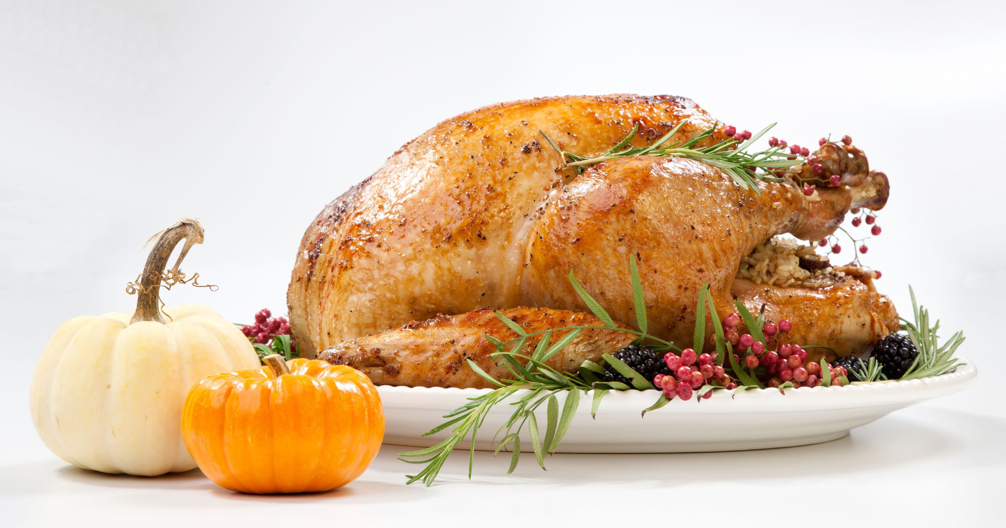Best Turkey Brands To Buy For Thanksgiving  Turkey salmonella outbreak Why USDA isn t release brand names