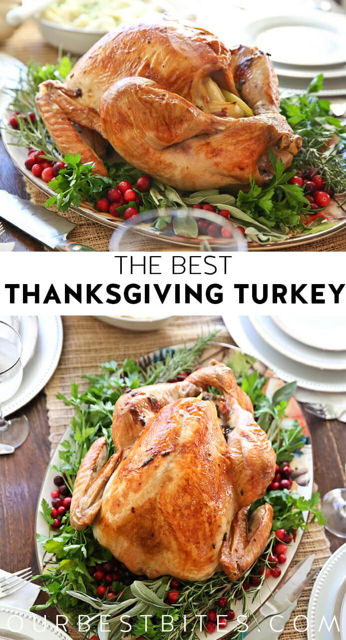 Best Turkey Recipes Thanksgiving  The Best Thanksgiving Turkey