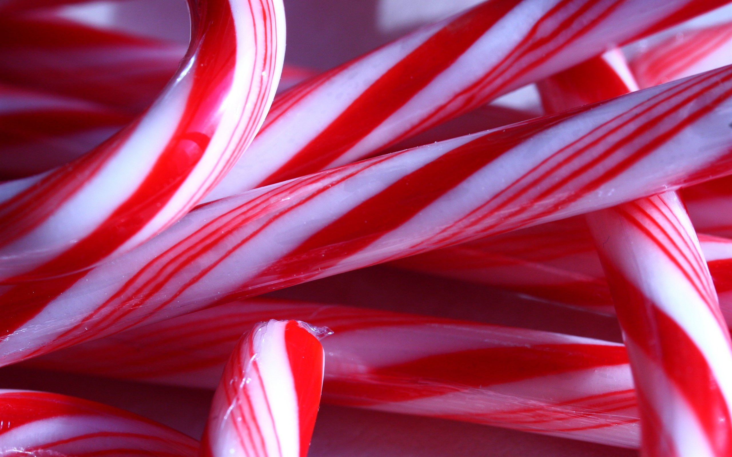 Christmas Candy Wallpaper  Candy canes can s wallpaper