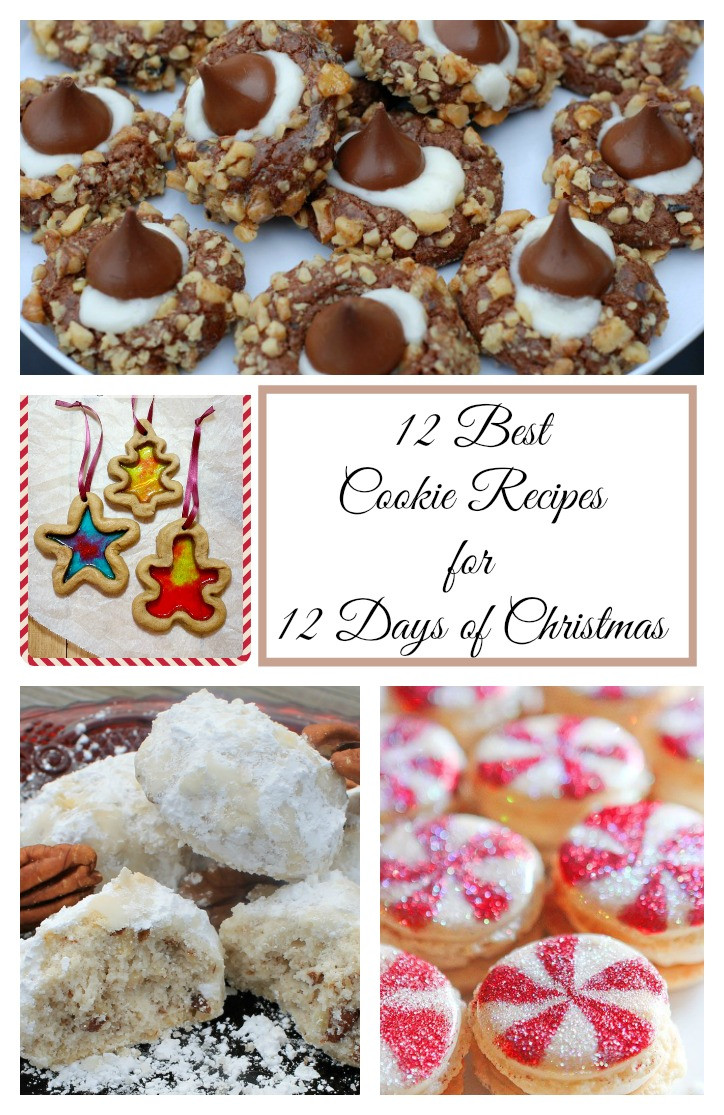 Christmas Cookies Recipe Pinterest  12 Days of Christmas Delicious Holiday Cookie Recipes