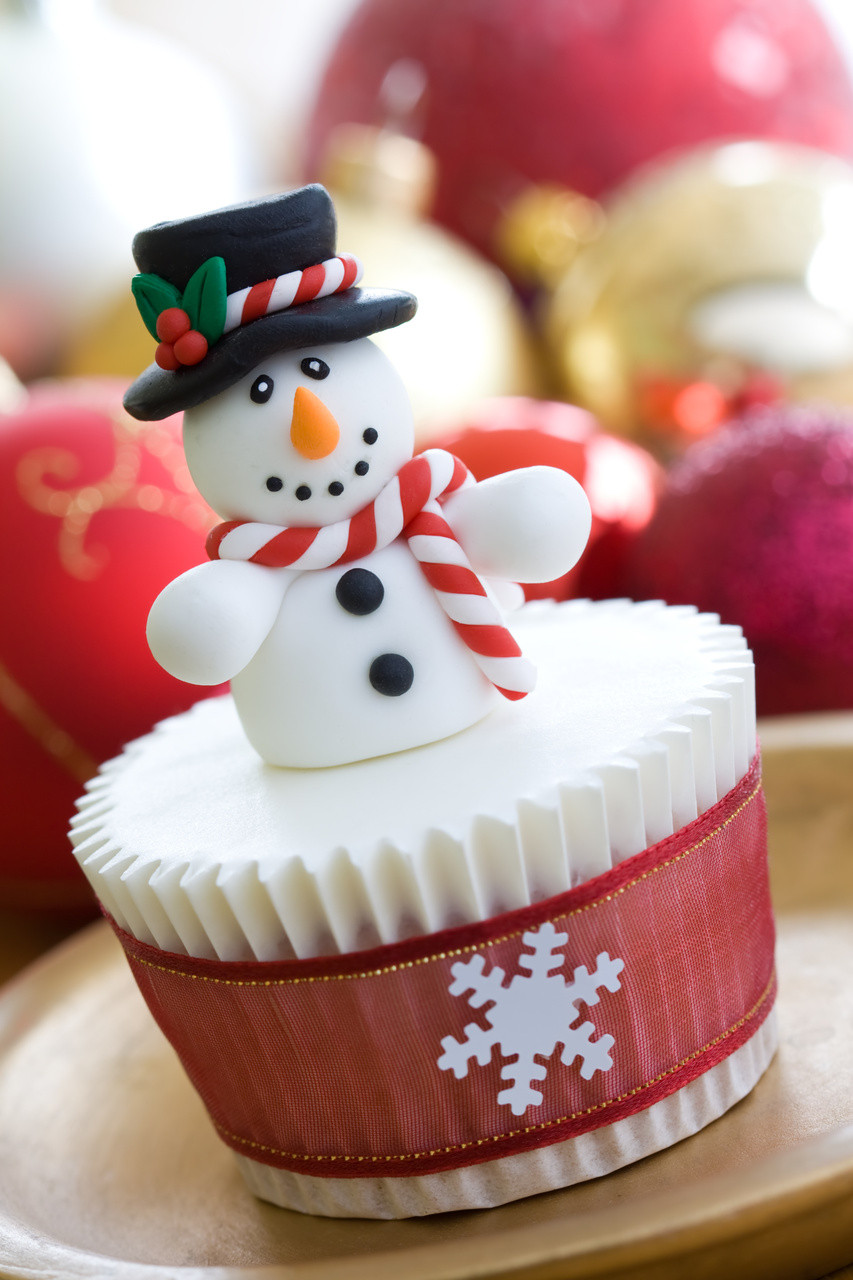Christmas Cupcakes Ideas  Christmas Cupcake Ideas