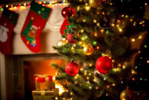 Christmas Dinner San Diego 2019  ¿Cuáles son los pases que prohben la Navidad