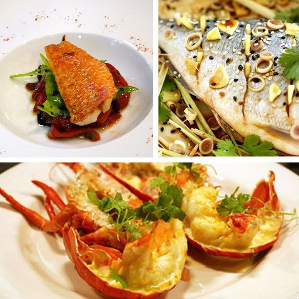 Christmas Seafood Dinners  17 Best images about Holiday Season on Pinterest
