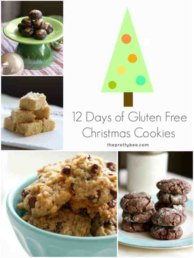 Dairy Free Christmas Cookies  12 Days of Gluten Free Christmas Cookies The Pretty Bee