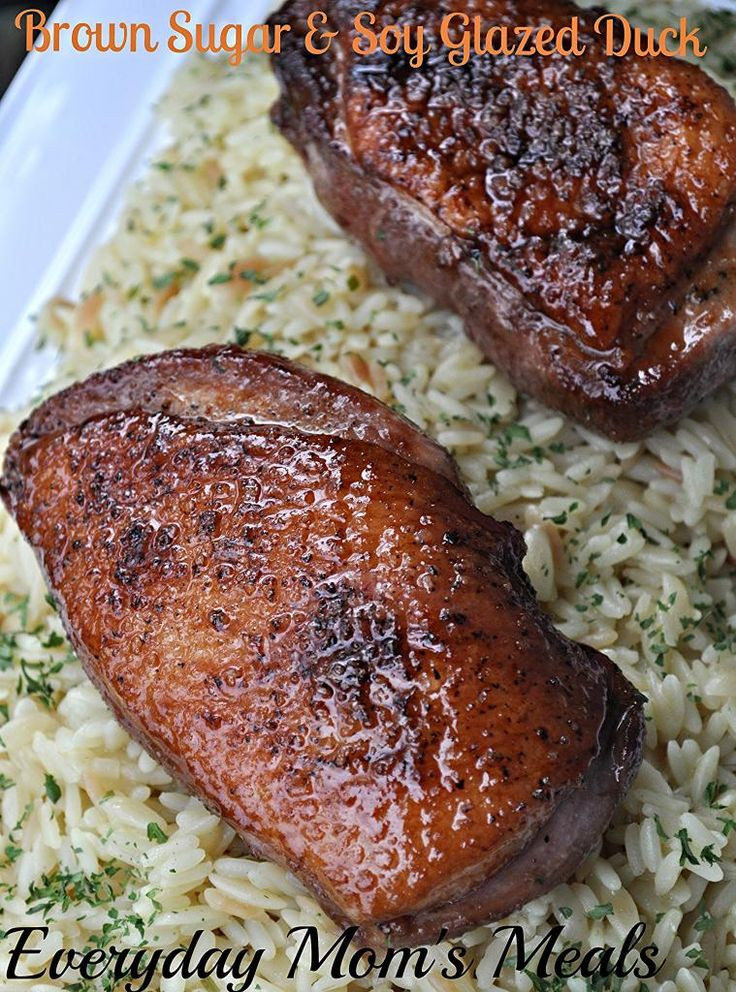 Duck Recipes For Thanksgiving  Best 25 Duck recipes ideas on Pinterest