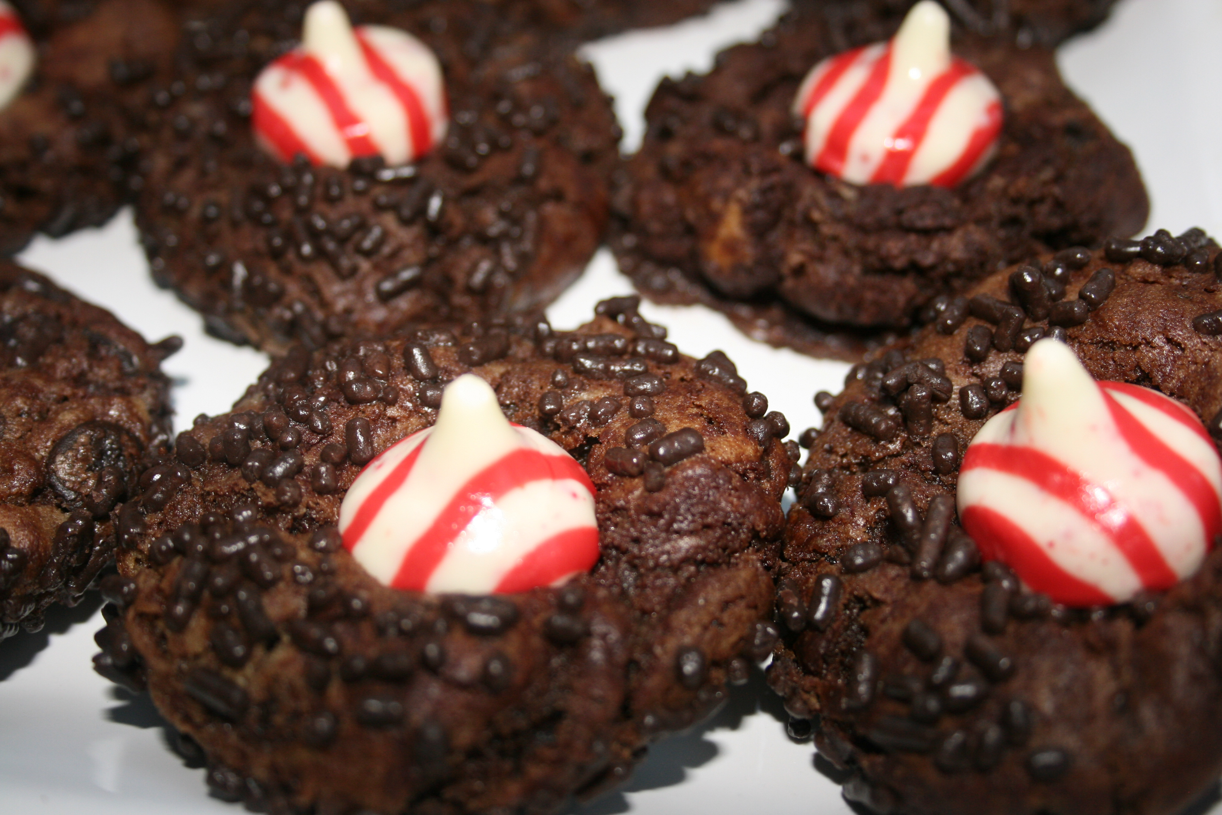Easy Christmas Cookies And Candy  Double Chocolate Chip Peppermint Cookie Recipes Archives