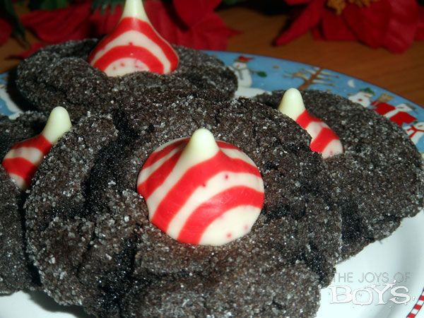 Easy Christmas Cookies And Candy  125 best Family Friendly Christmas Traditions images on