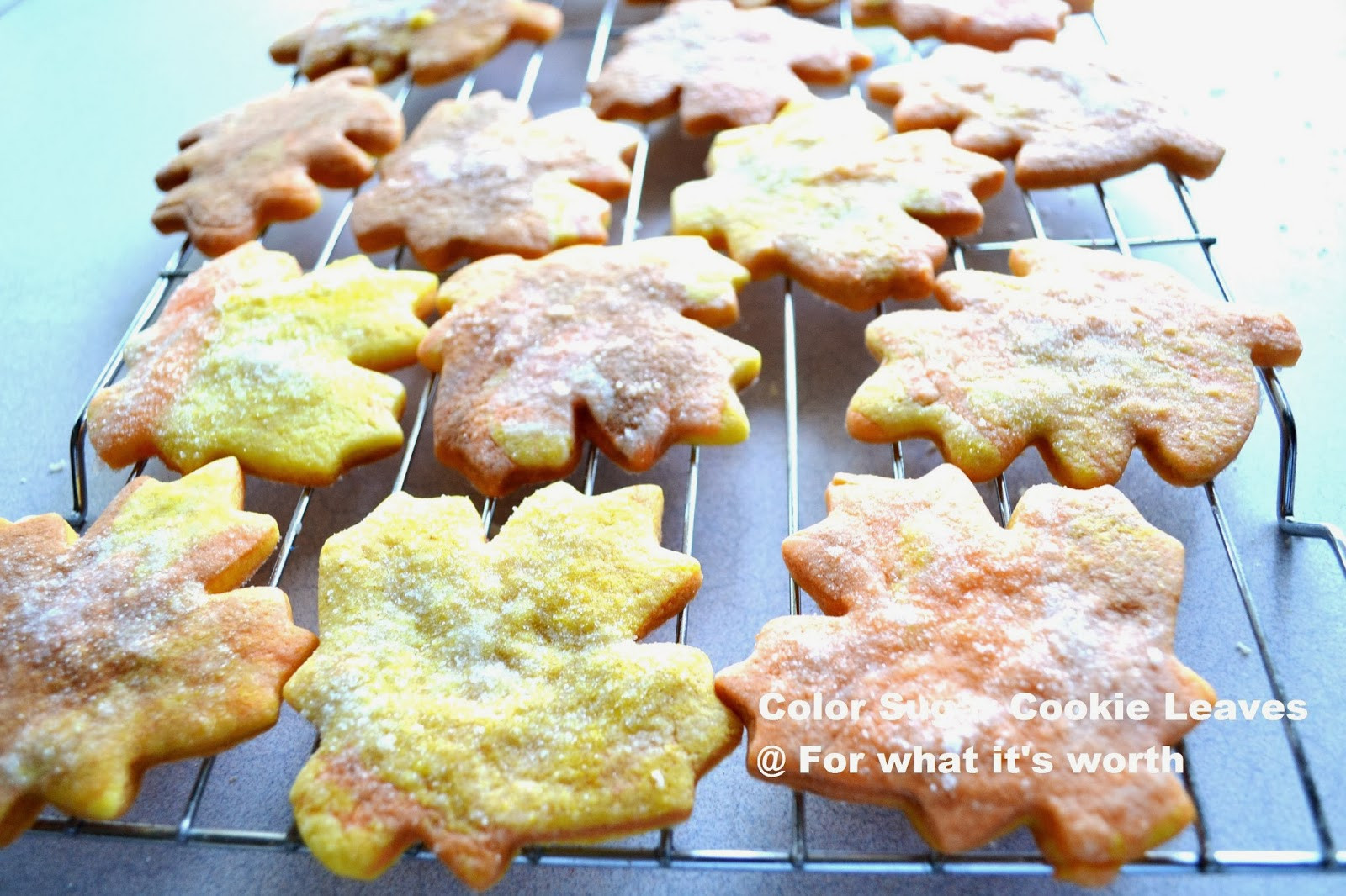 Fall Cut Out Cookies  Fall leaf cut out cookies For what it s worth
