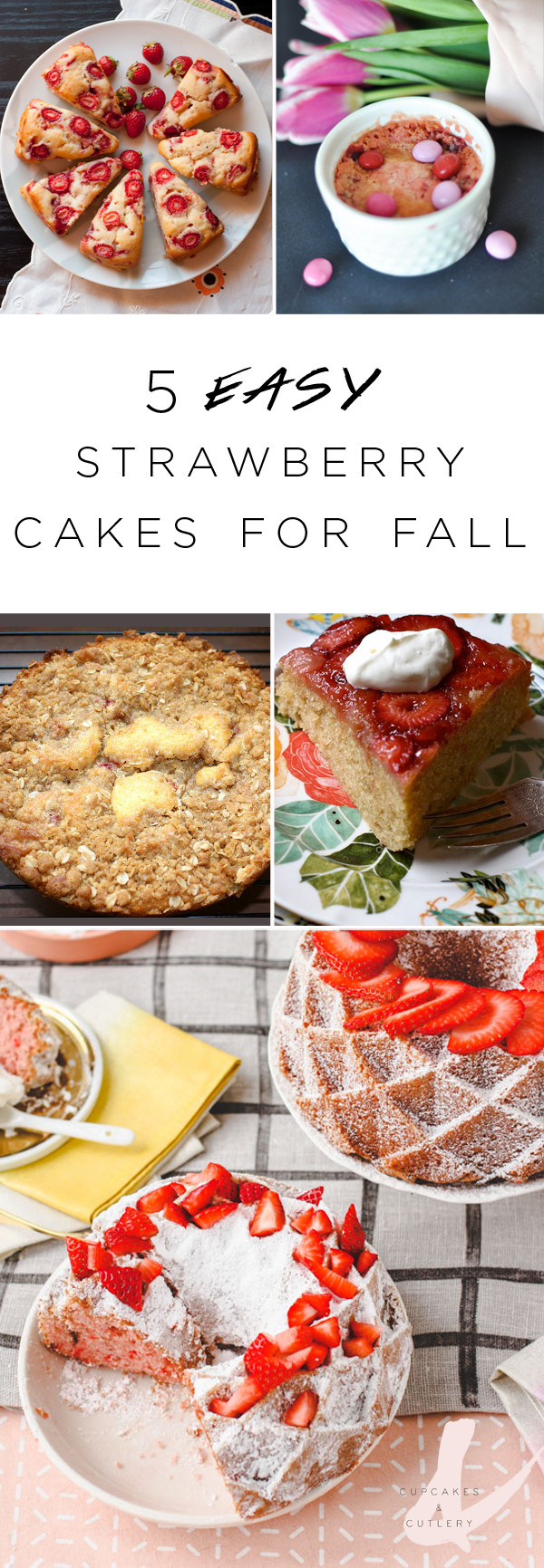 Fall Desserts For A Crowd  5 Easy Strawberry Cake Recipes for Fall
