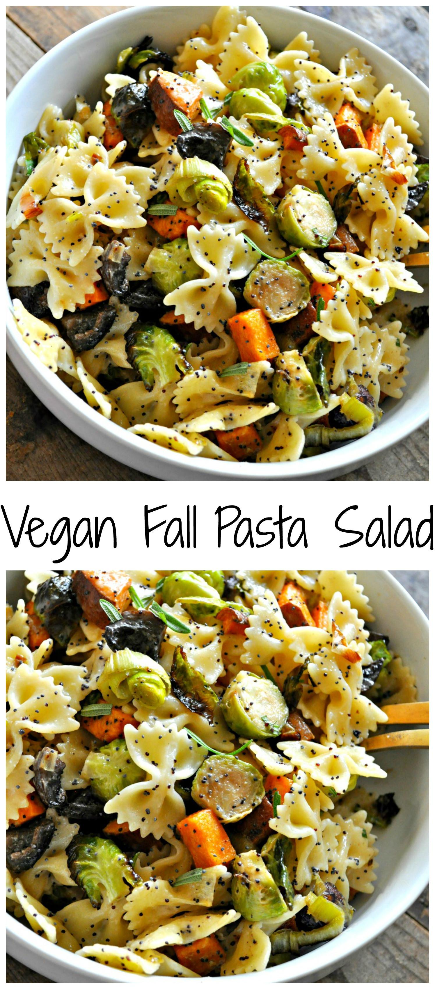 Fall Pasta Salad  Vegan Fall Pasta Salad Rabbit and Wolves