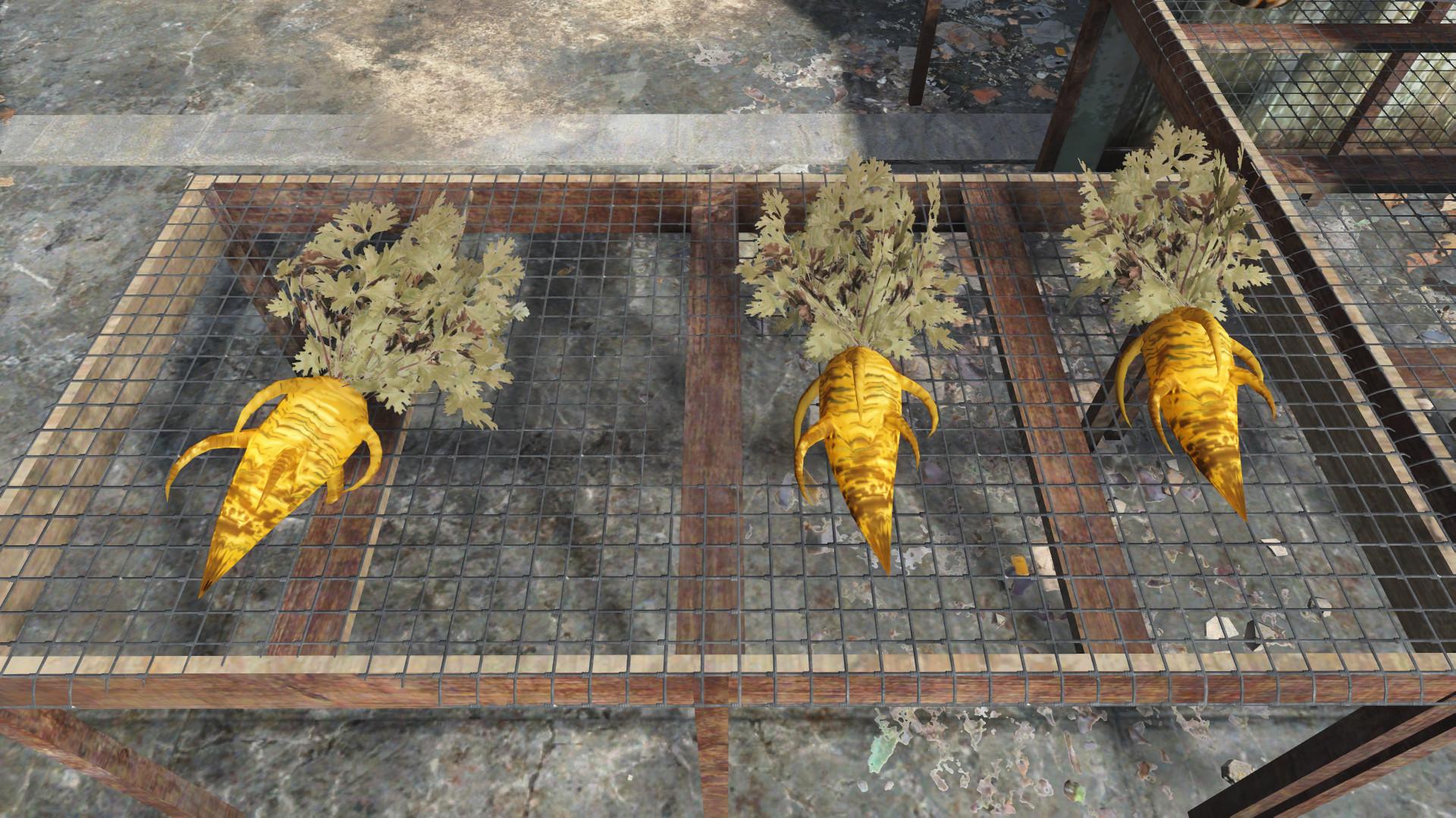 Fallout 4 Squirrel Stew  FALLOUT 4 ข้อมูลของอาหารประเภทผักและผลไม้