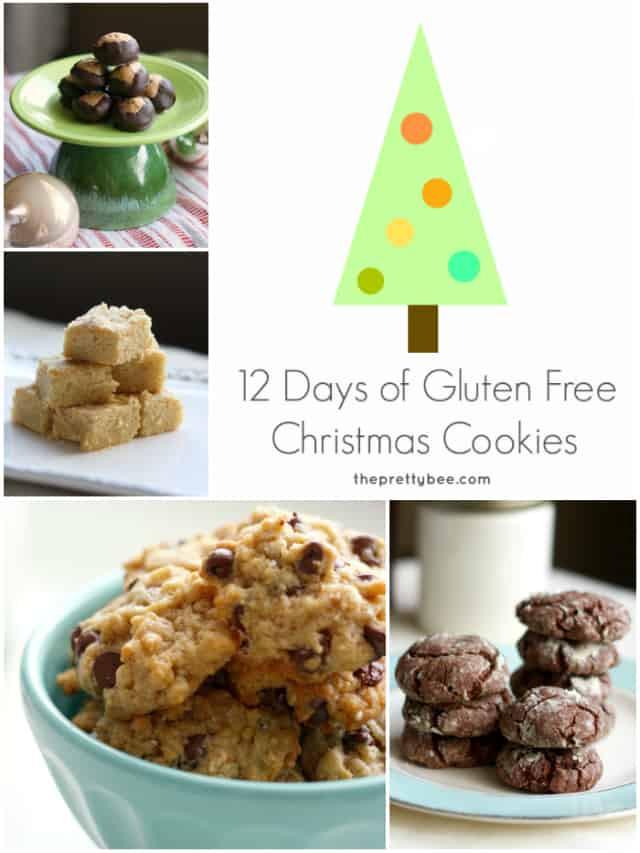 Gluten Free Christmas Cookies  12 Days of Gluten Free Christmas Cookies The Pretty Bee