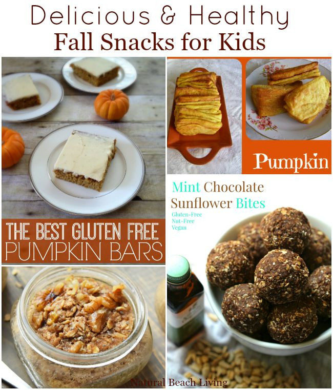 Healthy Fall Snacks  Healthy Fall Snacks for Kids Natural Beach Living