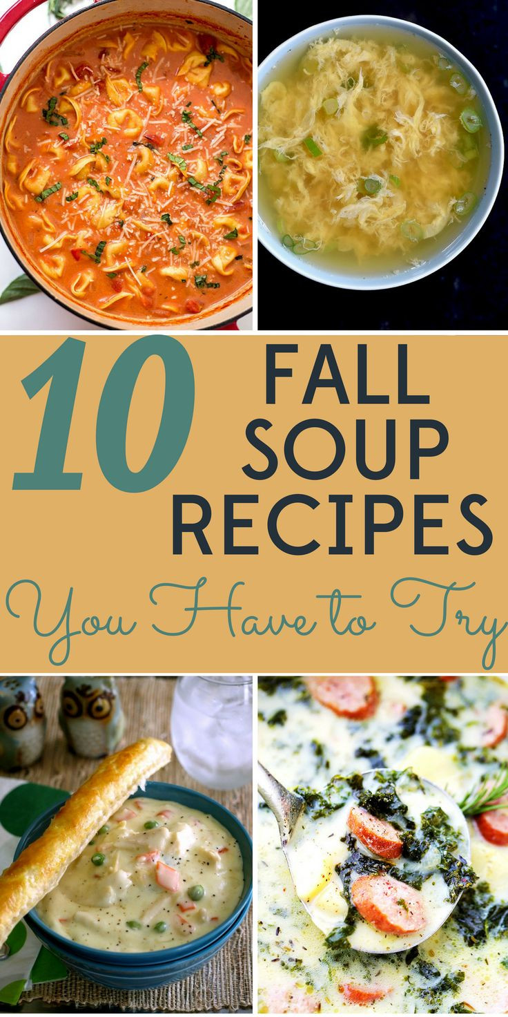 Healthy Fall Soups  243 best images about Bargain Babe on Pinterest