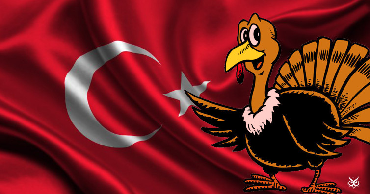How Did Turkey Become The Thanksgiving Bird  Why Is Turkey Called A Turkey When It Has Nothing To Do