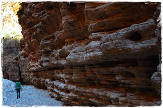 Lox Of Bagels Glens Falls  Day 17 Tuckup National Canyon and Fern Glen Grand