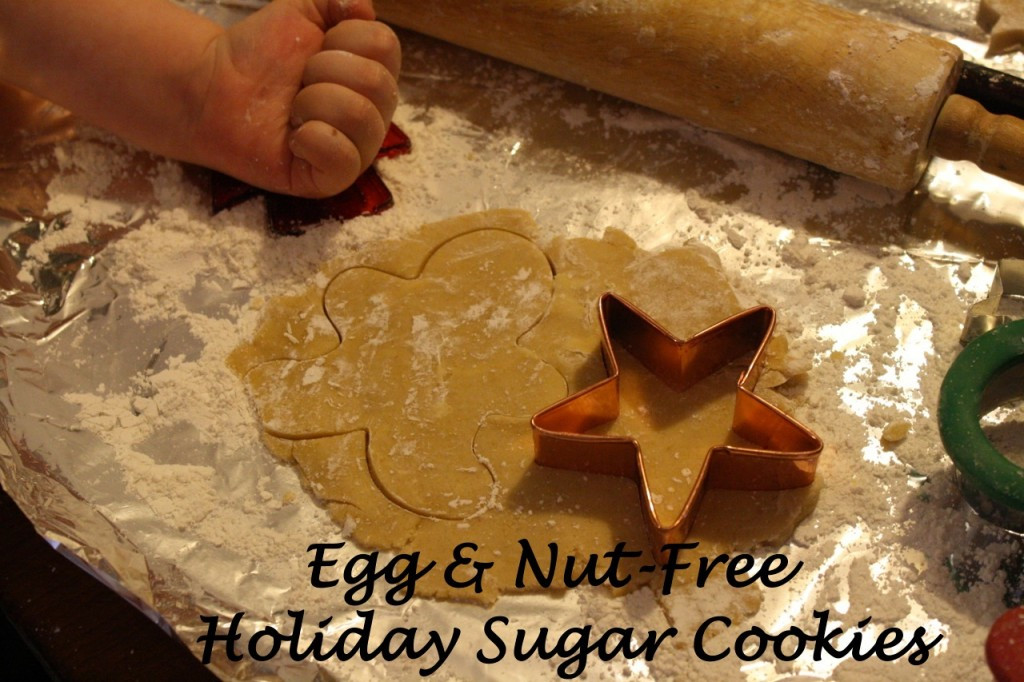 Nut Free Christmas Cookies  Tricia's Egg and Nut Free Holiday Cookies