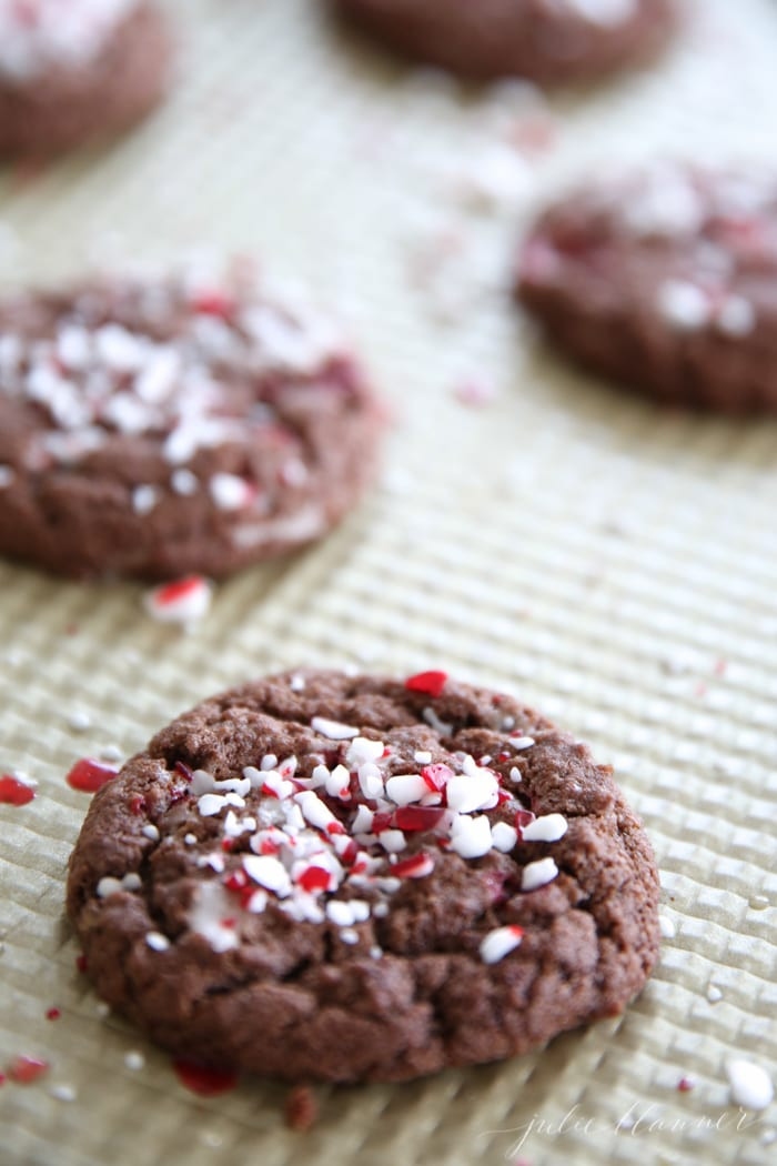 Peppermint Christmas Cookies  Chocolate Peppermint Cookies Chocolate Mint Cookies