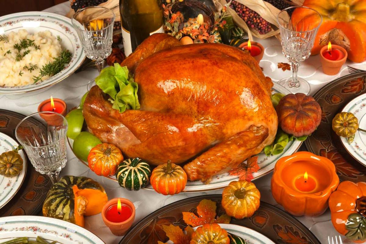 Pics Of Thanksgiving Turkey  turkeys