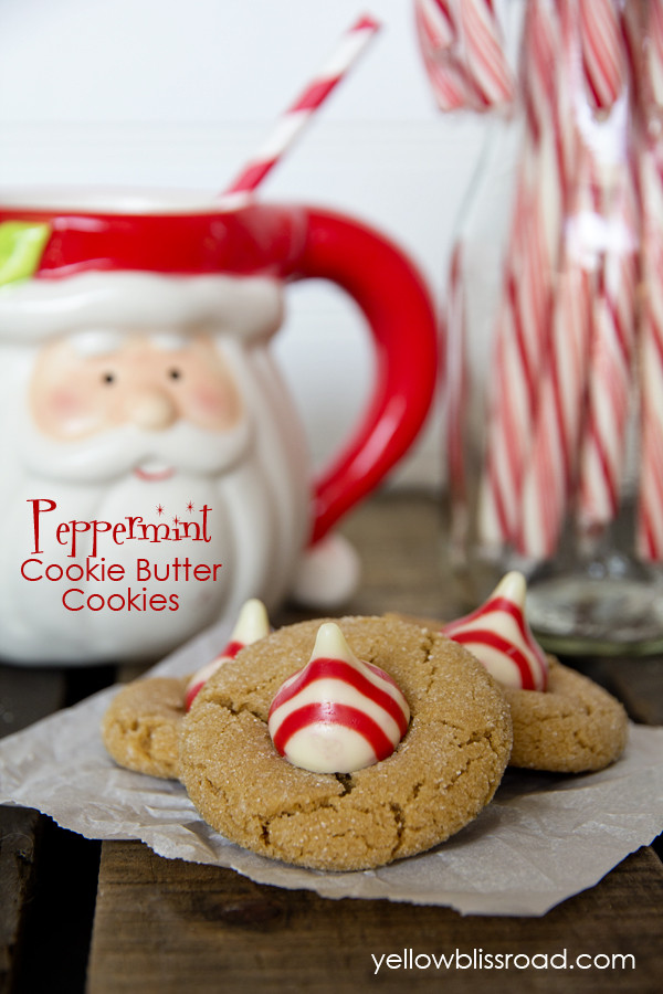 Quick And Easy Christmas Cookies  Peppermint Cookie Butter Cookies