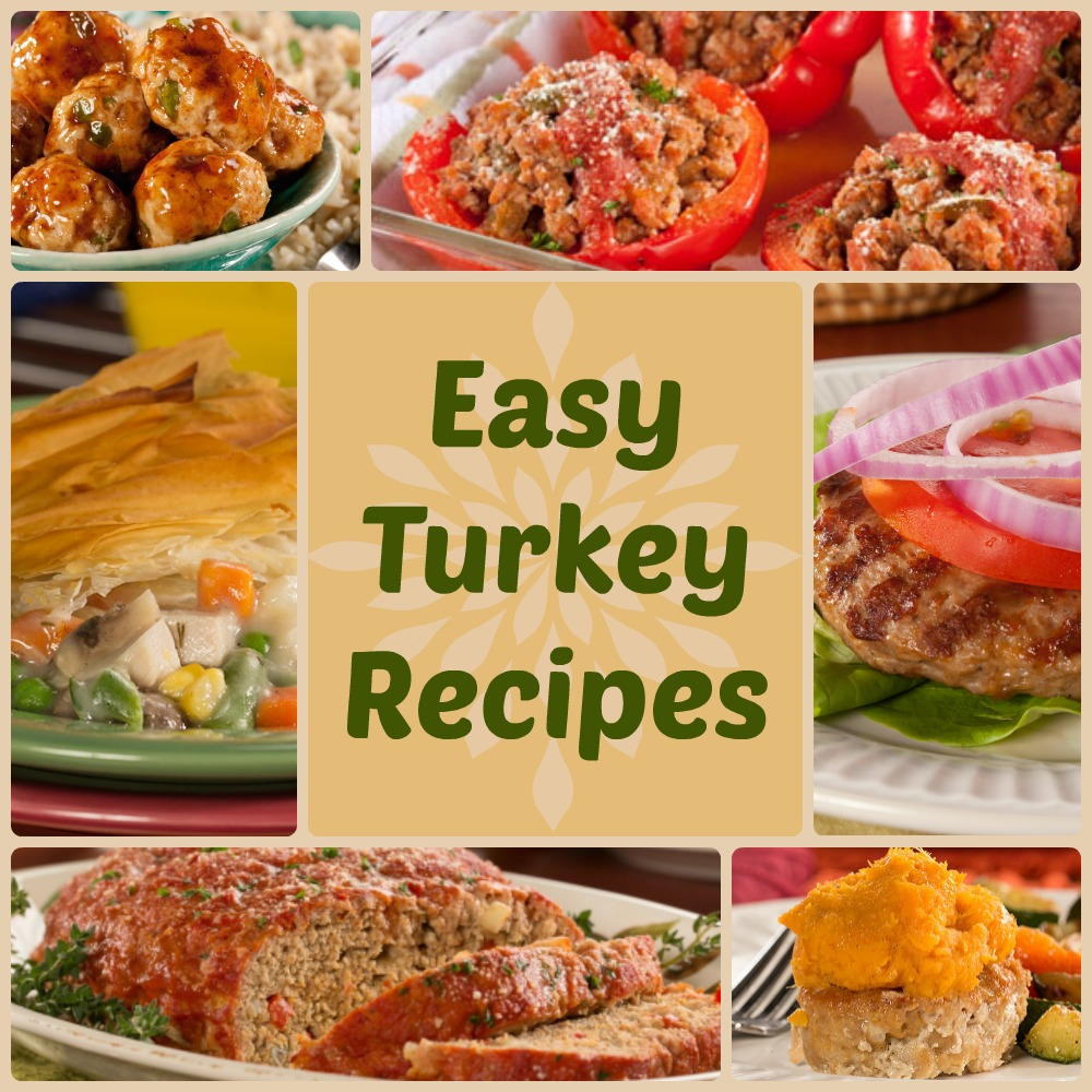 Quick And Easy Thanksgiving Recipes  Quick & Healthy Dinner Recipes 18 Easy Turkey Recipes