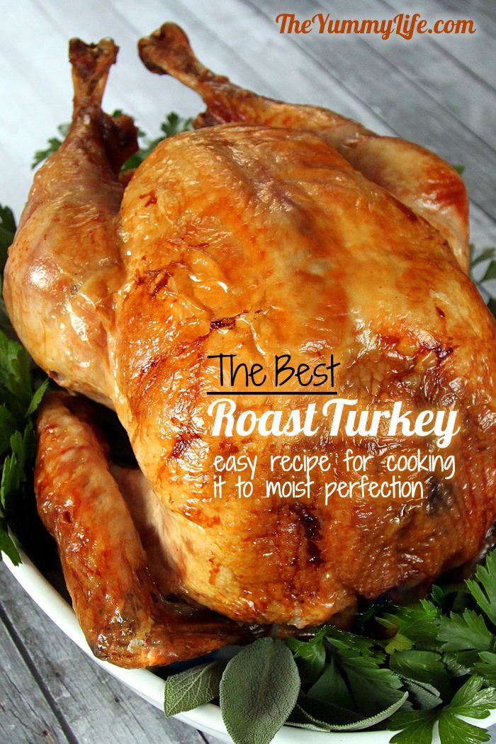 Roast Turkey Recipes Thanksgiving  Step by Step Guide to The Best Roast Turkey