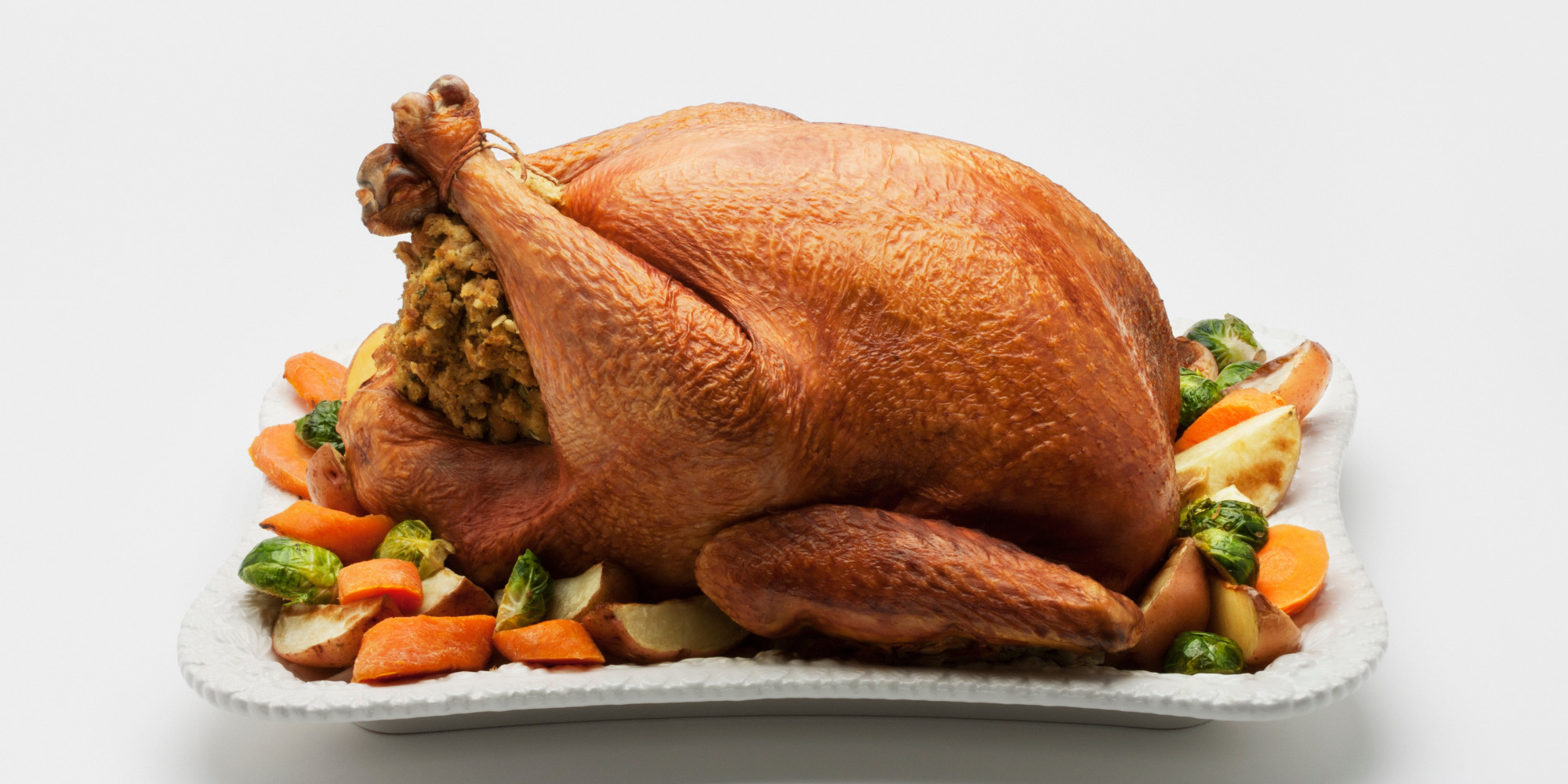 Small Thanksgiving Turkey  Tryptophan Making You Sleepy Is A Big Fat Lie