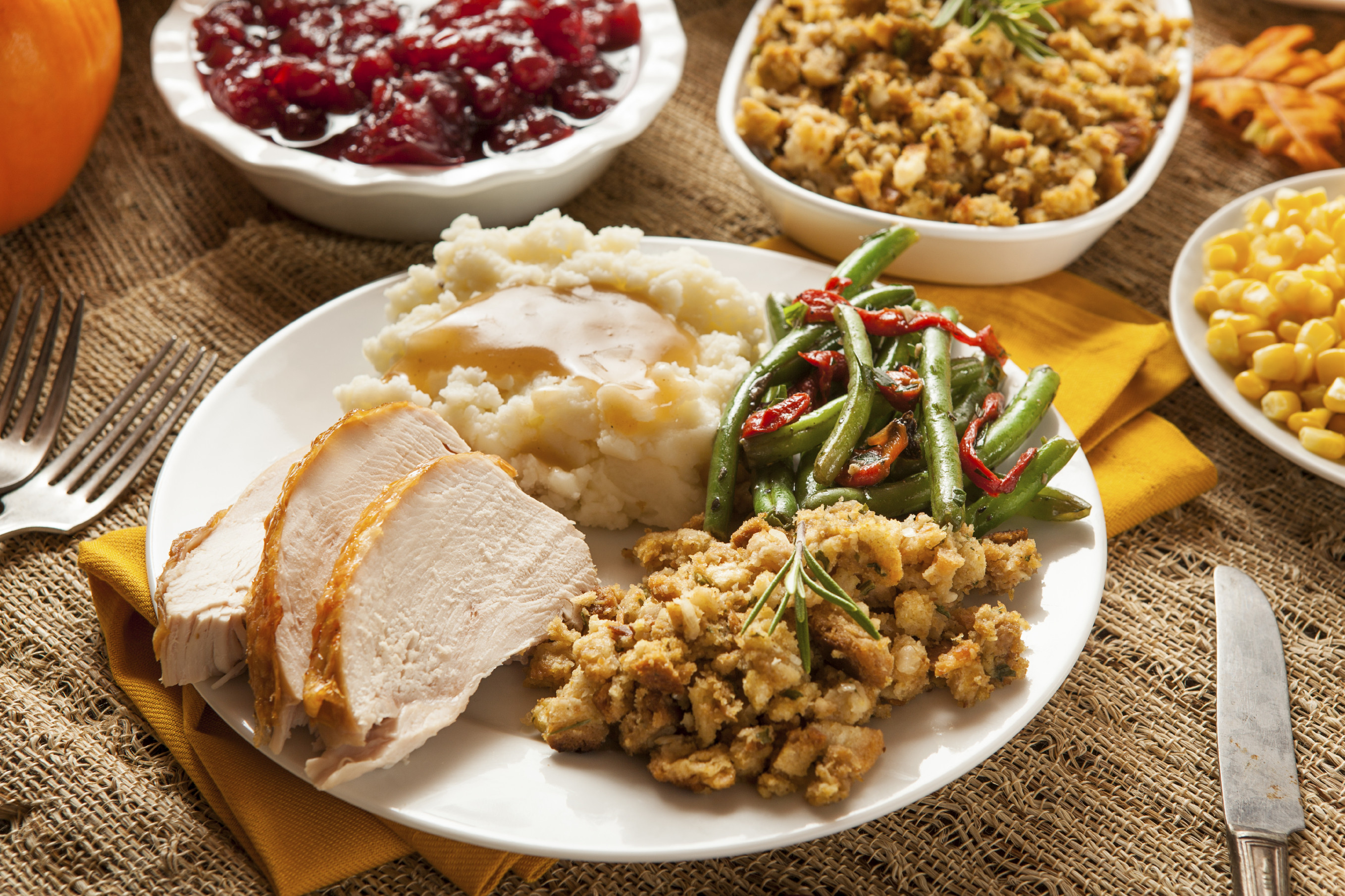 Thanksgiving Dinner Plate  What s really on your plate at Thanksgiving The Daily