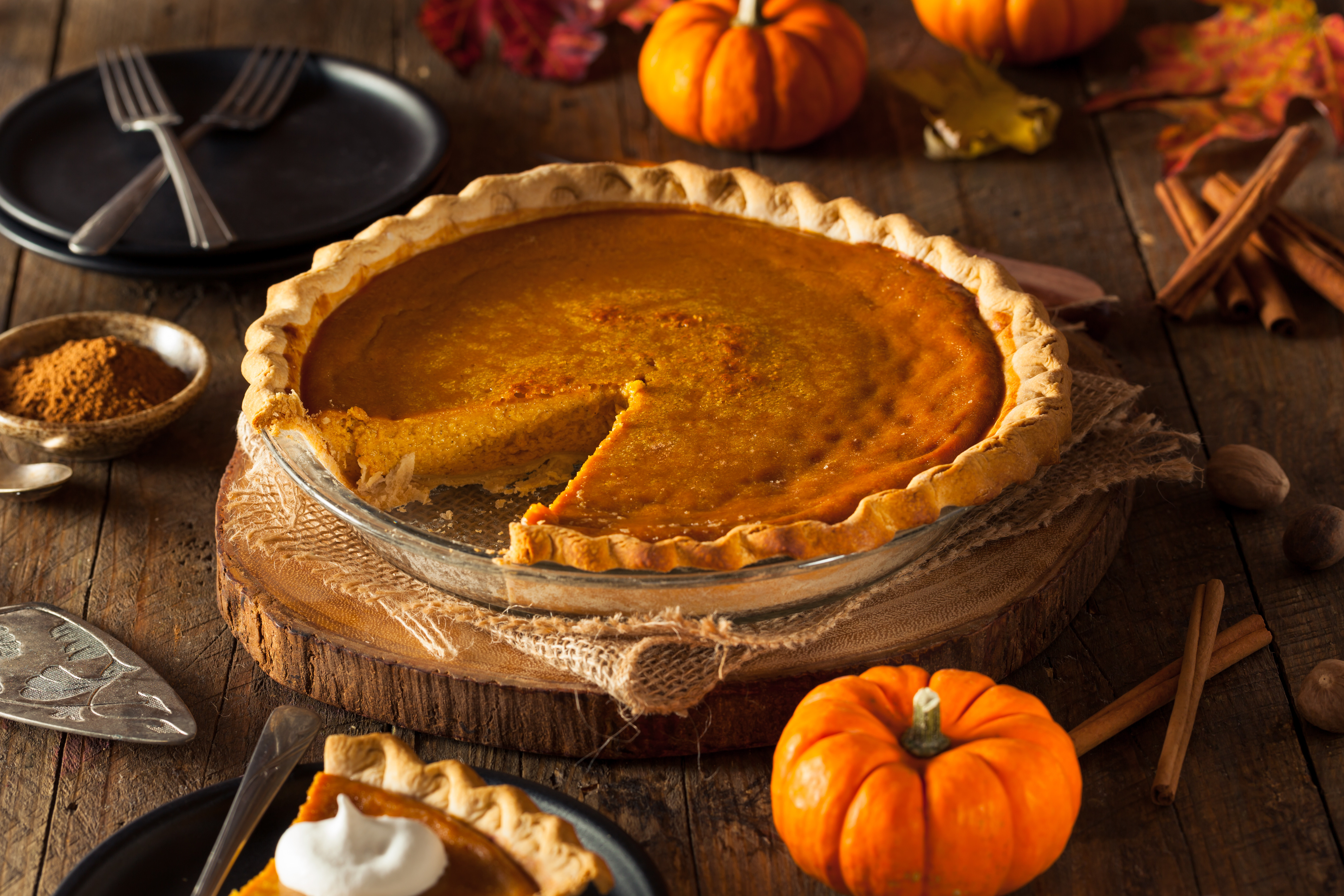 Thanksgiving Pumpkin Pie Recipe  Blue Ribbon Pumpkin Pie Recipe