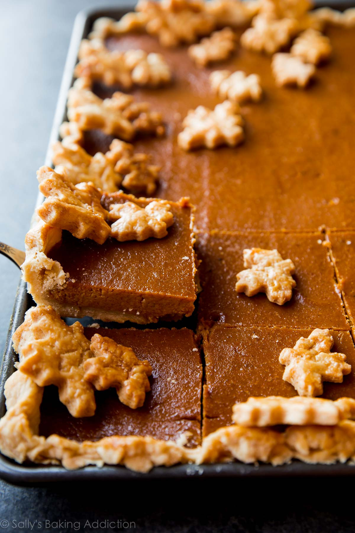 Thanksgiving Pumpkin Recipes  Pumpkin Slab Pie Feeds a Crowd Sallys Baking Addiction