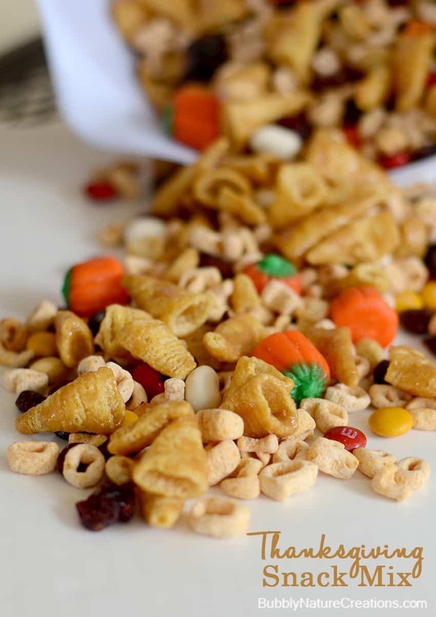 Thanksgiving Snacks Recipes  Thanksgiving Snack Mix Sprinkle Some Fun