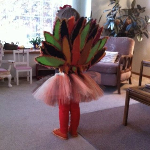 Thanksgiving Turkey Costume  19 best Silicon Valley Turkey Trot Costume Ideas images on