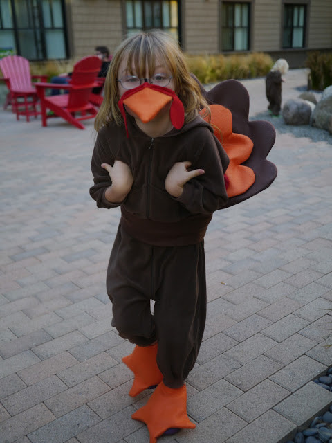 Thanksgiving Turkey Costume  Little Hiccups A Thanksgiving Turkey Costume