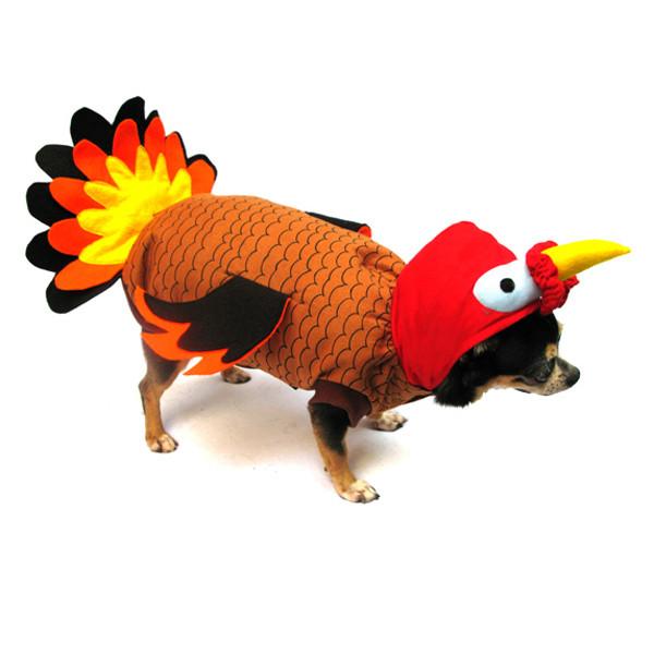 Thanksgiving Turkey Costume  Turkey Dog Costume