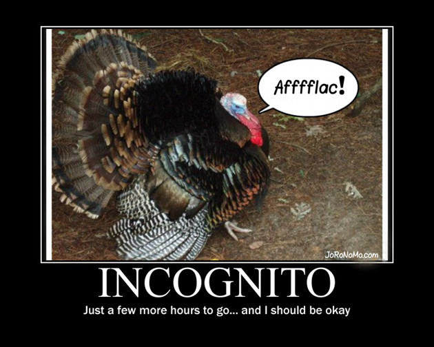 Thanksgiving Turkey Funny  Funny Turkey Pics on Pinterest