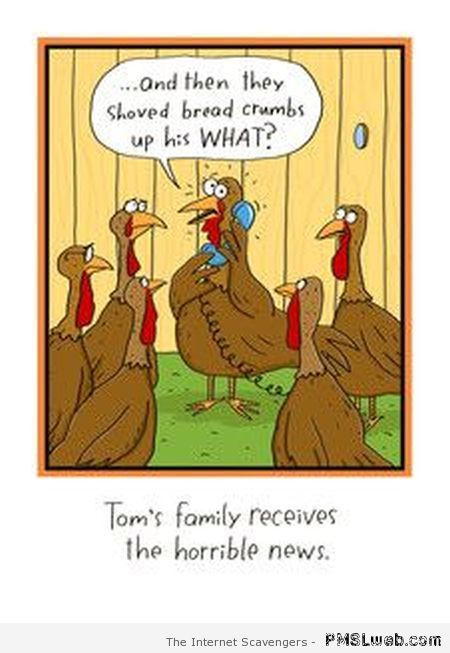 Thanksgiving Turkey Funny  Funny Thanksgiving Turkey