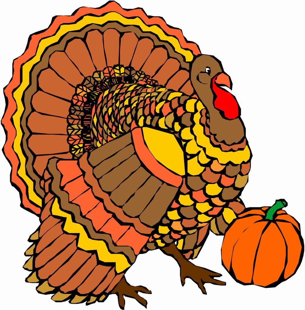Thanksgiving Turkey Pictures Clip Art  Thanksgiving Turkey ClipArt Best