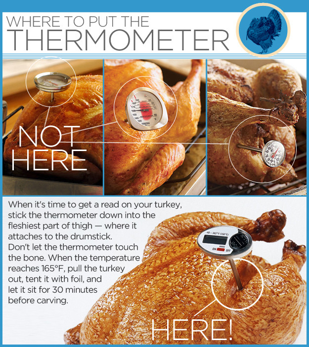 Thanksgiving Turkey Temperature  Where To Put The Thermometer In a Turkey