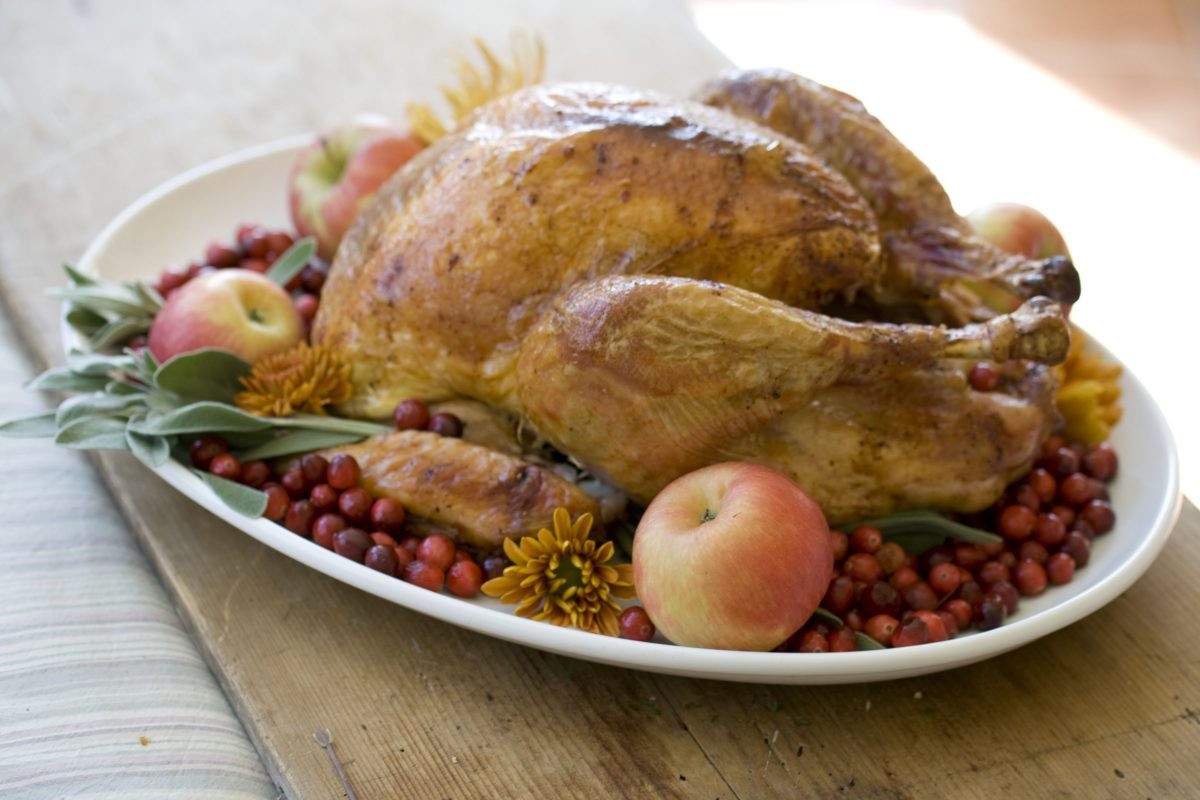 Thanksgiving Turkey Temperature  What Temperature to Cook a Thanksgiving Turkey and How