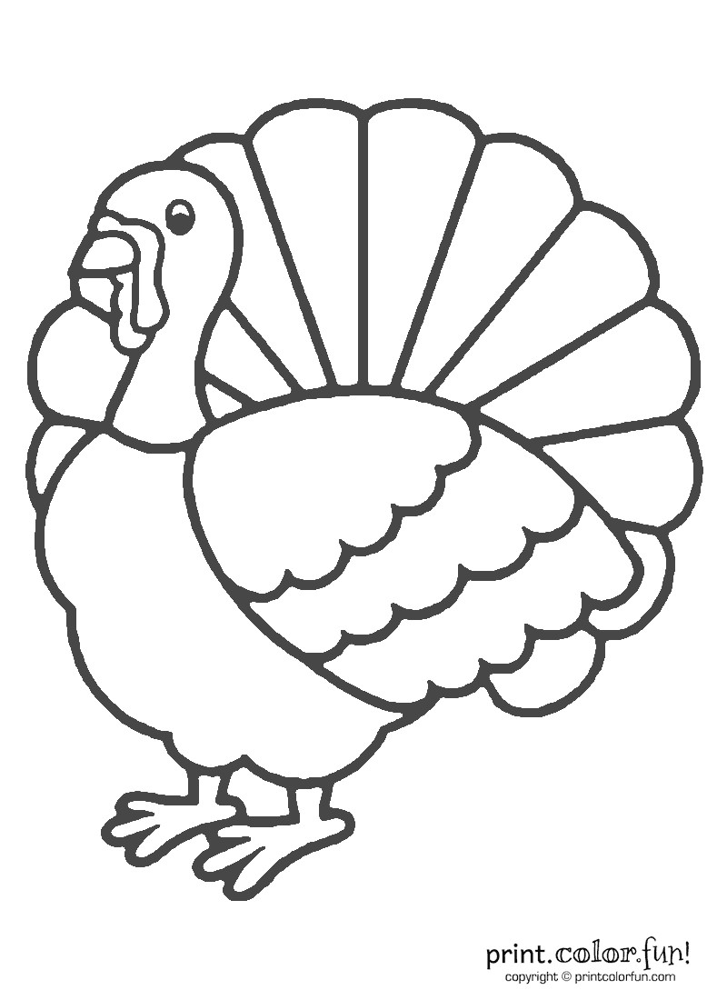 Thanksgiving Turkey To Color  Thanksgiving turkey coloring coloring page Print Color
