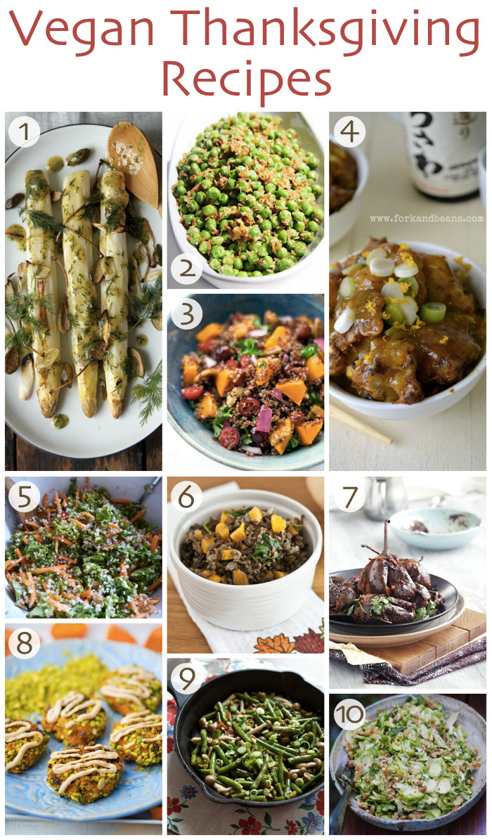 Thanksgiving Vegan Recipes  10 Vegan Thanksgiving Recipes