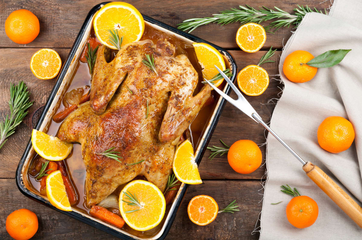 Turkey Alternatives Thanksgiving  9 turkey alternatives you can cook for Thanksgiving