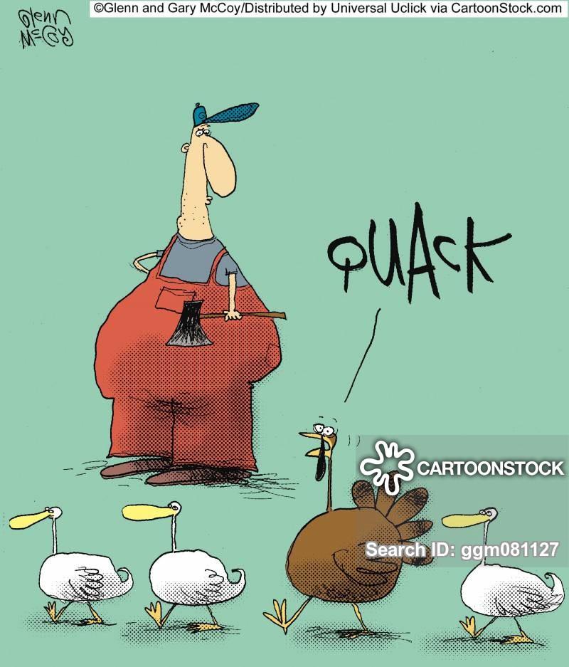 Turkey Cartoons Thanksgiving  Turkey Cartoons and ics funny pictures from CartoonStock