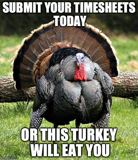 Turkey Thanksgiving Meme  Thanksgiving Day Imgflip