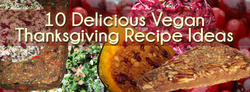 Vegan Thanksgiving Ideas  10 Delicious Raw and Vegan Thanksgiving Recipe Ideas